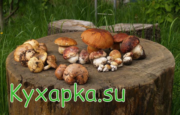 грибной натюрморт